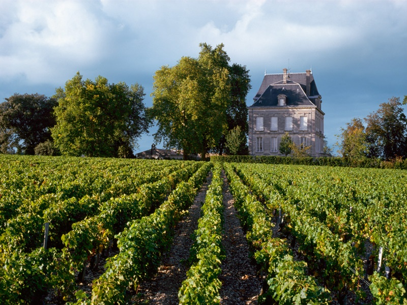 The stars of Bordeaux, including Château Latour, above, are among  the most popular wines to collect. Photograph: Cephas