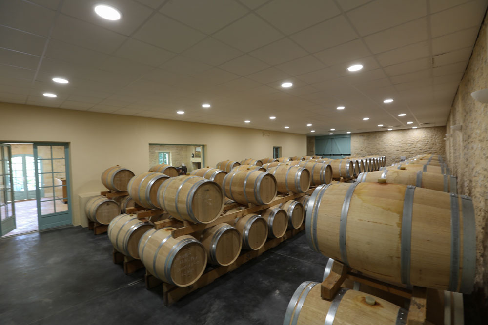 Wine ageing in a barrel room at a Bordeaux winery