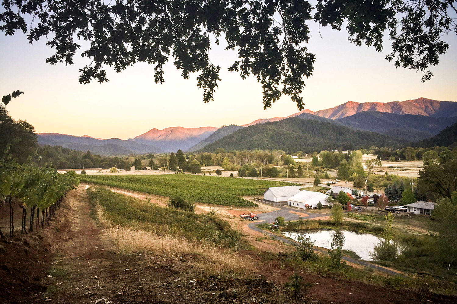 Producer of award-winning, handcrafted wines, Deer Creek Vineyards offers winemakers an incredible opportunity to own and operate a successful business that includes a 40-plus acre vineyard, wine production facilities, barrel storage, wine tasting room with direct consumer and wholesale wine sales.