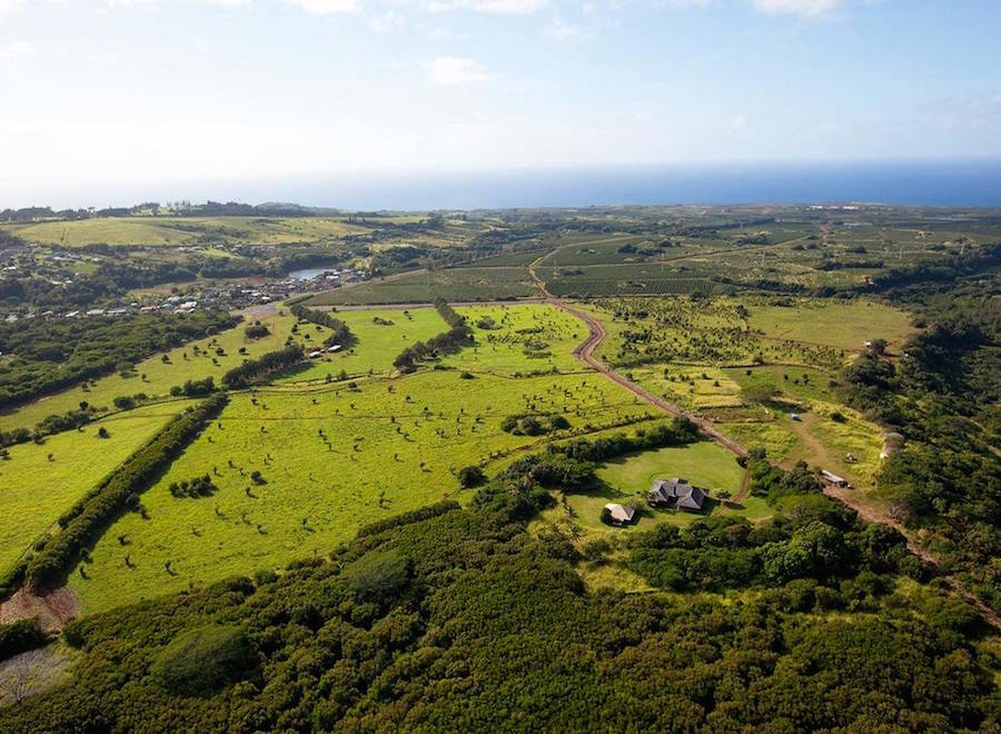 Brydeswood Ranch sits on a spectacular parcel of 272 acres overlooking the Pacific Ocean at the southwest edge of the island of Kauai in Kalaheo, Hawaii.