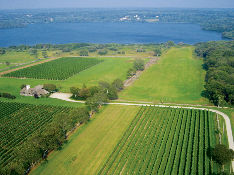 "Sakonnet Vineyards in Rhode Island produce wines under the Southeastern New England appellation. Its vines cover more than 37 acres of ""estate grown"" wine every year."